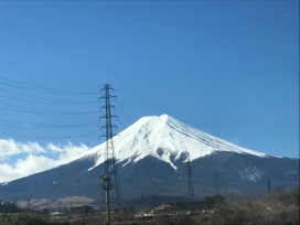 Photo Mar 08, 4 46 18 PM